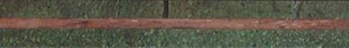 3139-Green-Tourmaline--Walnut
