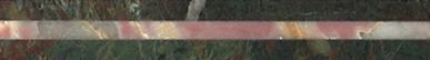 4312-Verde-Borgogna--Fior-di-Pesco